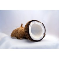 Coconut Milk Powder 100g
